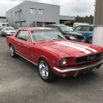 Ford mustang coupe 1966 - FM112 - 1